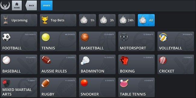 Terminal Ansicht bei BigBetWorld für mobile Wetten